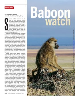 baboon_watch_page_1